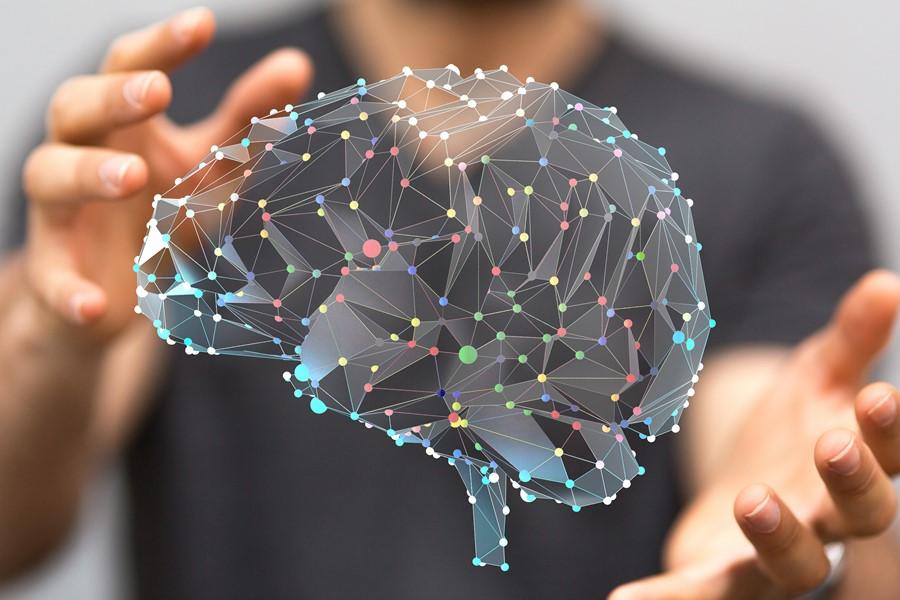 Senzorii grafen citesc unde neuronale cu frecvență joasă asociate cu diferite etape ale creierului
